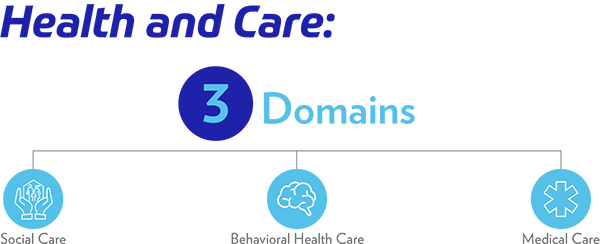 Healthcare Domains